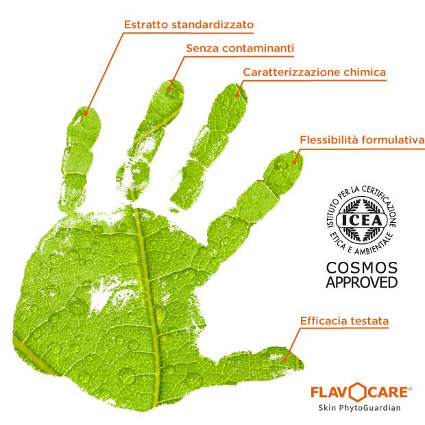 Principi Flavocare Cosmos approved