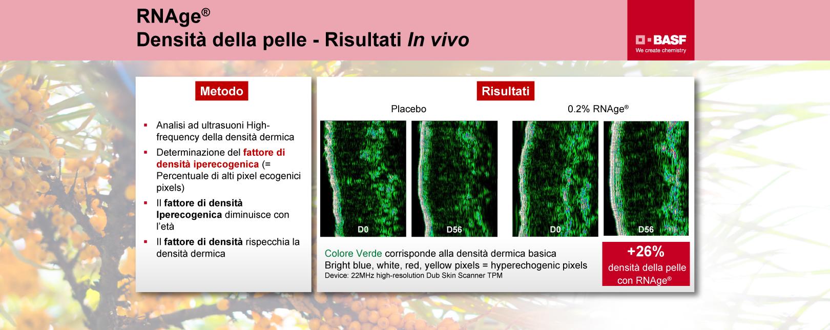 RNAge-densita-della-pelle