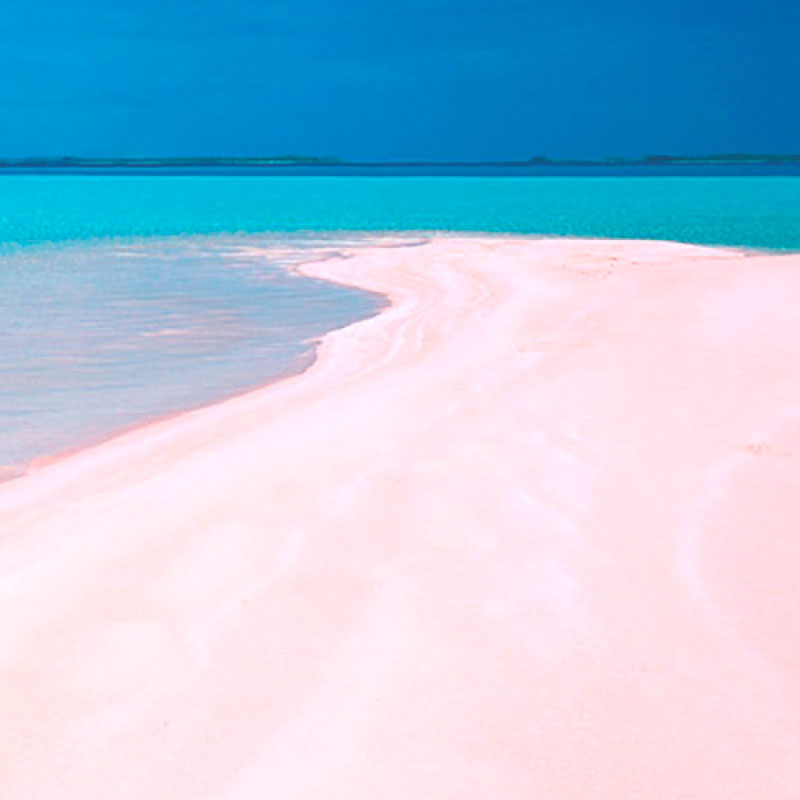 Pink Sand from Tikehau