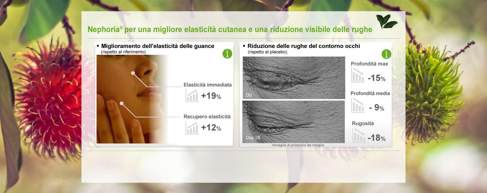 Nephoria per una migliore elasticità cutanea e una riduzione visibile delle rughe