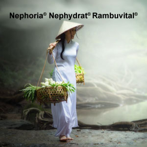 Nephoria<sup>®</sup>, Nephydrat<sup>®</sup> e Rambuvital<sup>®</sup>