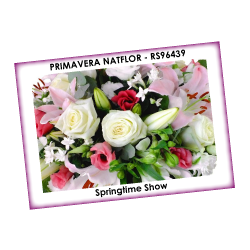 PRIMAVERA NATFLOR