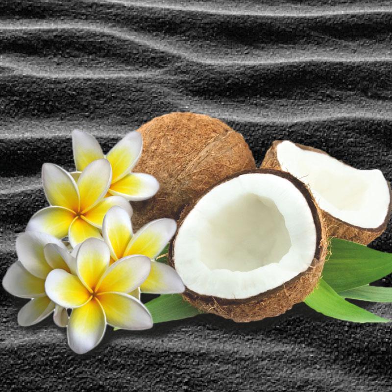 Coconut Scrub Body Butter COD. BSS030919E-01