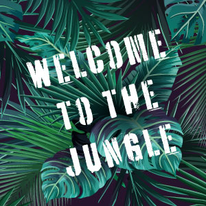 WELCOME TO THE JUNGLE | Making Cosmetics 2019