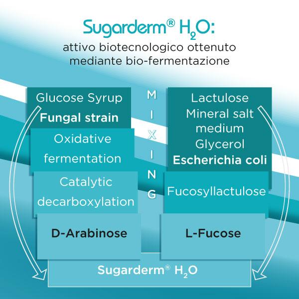 Sugarderm attivo biotecnologico ottenuto da bio-fermentazione