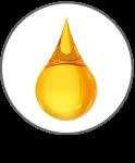 Argan Program Sfruttamento sostenibile Argan: Olio
