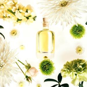 IMG-in-evidenza-Fine-Fragrances