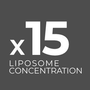 Icona-Liposoma