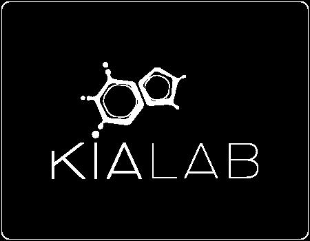 Logo-Kialab