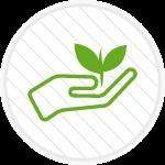 Icona-Coltivazione-biologica