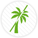 Icona-senza-olio-di-palma